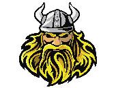 Viking Kostüme