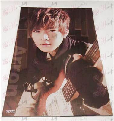 42 * 29cm Aaron embossed posters (8 / set)