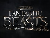 Fantastic Beasts and Where to Find Them Kostüme