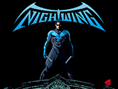 NightWing Kostüm