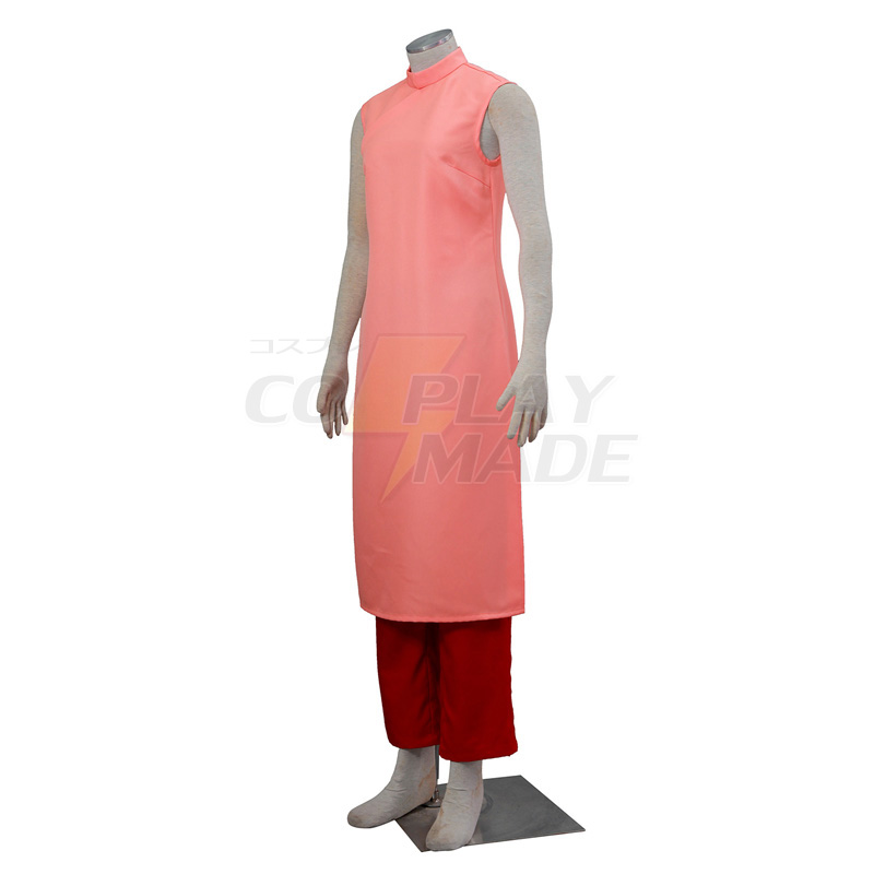 Dragon Ball Z Chi Chi Cosplay Costume Pink Long Dresses