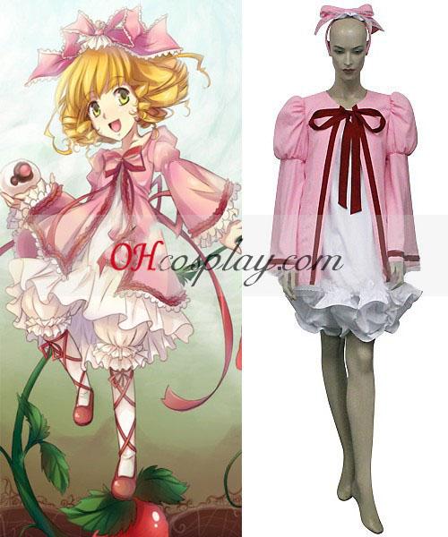 Hinaichigo Rozen Maidenin Lolita Cosplay asu