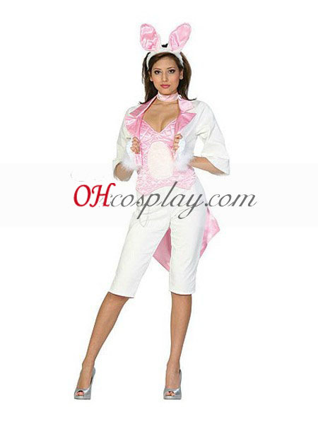 Alice flanked flourished Wonderland Ladies Sexy Rabbit Cosplay Costume
