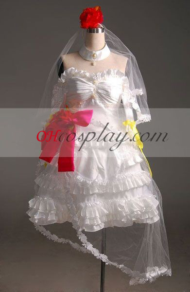 Vocaloid Project DIVA PC Cosplay Costume-Advanced Aangepaste