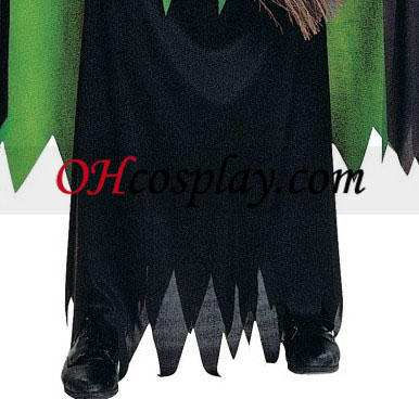 The Wizard of Oz Wicked Witch Adult Cosplay Halloween Costume Buy Online