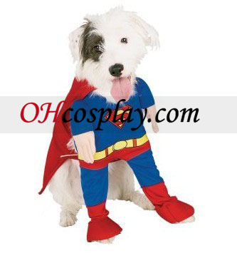 Superman Deluxe Dog Kostym