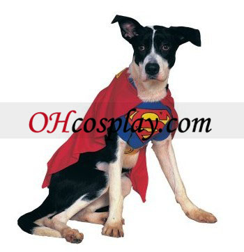 Супермен куче костюм