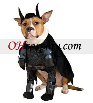 Batman Dark Knight Batman Dog Kostym