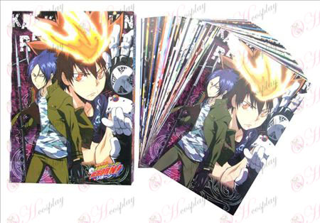 Reborn! Accessories Postcards + Cards (2)