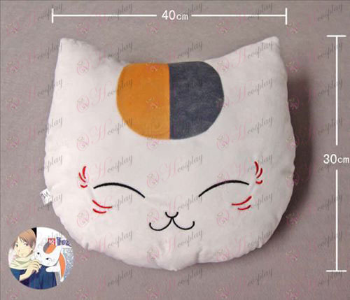 Cat teacher Pillow